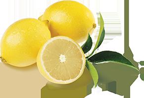 lemons wonderful citrus