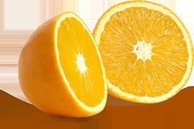 valencias wonderful citrus